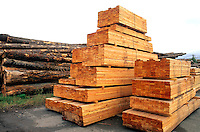 Lumber at sawhill pulp plant in Quesnel British Columbia Canada