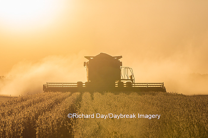 63801-07107 Farmer harvesting soybeans at sunset, Marion Co., IL