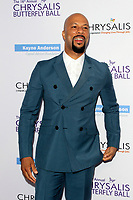 LOS ANGELES - JUN 3:  Common at the 16th Annual Chrysalis Butterfly Ball at the Private Estate on June 3, 2017 in Los Angeles, CA