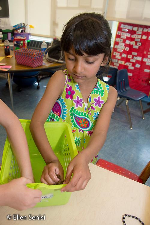 MR / Schenectady, NY. Zoller Elementary School (urban public school). Kindergarten classroom. Student (girl, 6, bi-racial) cleans out classroom storage bins. MR: Myk1. ID: AM-gKw. © Ellen B. Senisi.