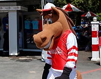 Scenes from the Saratoga Race Course, Saratoga Springs, NY.  Aug. 4, 2018.  (Photo credit: Bruce Dudek/Eclipse Sportswire)