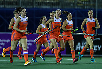 Netherlands celebrate a goal during the World Hockey League final between the Netherlands and New Zealand. North Harbour Hockey Stadium, Auckland, New Zealand. Sunday 26 November 2017. Photo:Simon Watts / www.bwmedia.co.nz