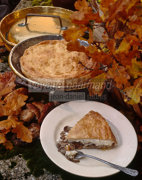 Europe/France/Limousin/23/Creuse: Tourte aux cèpes