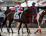 Backyard Heavan (no. 2) in the Post Parade for the  Whitney Stakes (Grade I), Aug. 4, 2018 at the Saratoga Race Course, Saratoga Springs, NY.  Ridden by Javier Castellano.  (Photo credit: Bruce Dudek/Eclipse Sportswire)