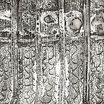 Scan of vintage print. Negative file #79-292-2. Abstract of burned metal. 1979. 1of1