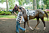 Bid Til Included before The Cape Henlopen Stakes Delaware Park on 6/28/12