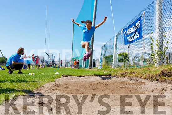 Kinga Mikolajczyk from Ardfert doing the long jump at the St. Brendan's A.C. Open Sports Day in Ardfert on Monday.