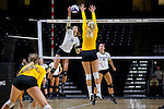 Hanna Lee (16) of the Wake Forest Demon Deacons attacks the ball during the match against the Loyola Ramblers in the LJVM Coliseum on September 3, 2016 in Winston-Salem, North Carolina.  The Ramblers defeated the Demon Deacons 3-2.   (Brian Westerholt/Sports On Film)