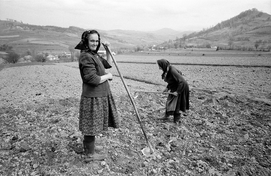 ROMANIA / Maramures / Valeni / April 2003..Spring planting in Valeni where each family tends to many small plots of land scattered throughout the village. The staple crops are beans and potatoes...© Davin Ellicson / Anzenberger..