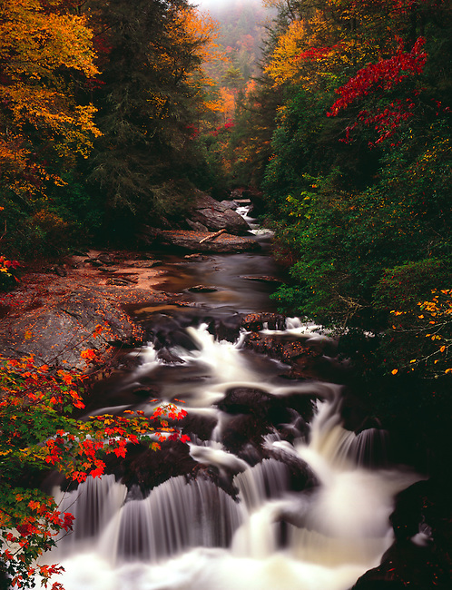 Autumn on the headwaters of the Chattooga