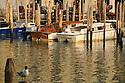 View from the Rialto Bridge at Sunrise, Venice, Italy