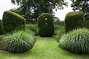 Yew topiary inspired by Henry Moore sculptures, The Circus, Town Place, late June.