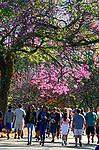 Pessoas no Parque do Ibirapuera. Sao Paulo. 2017. Foto de Juca Martins.