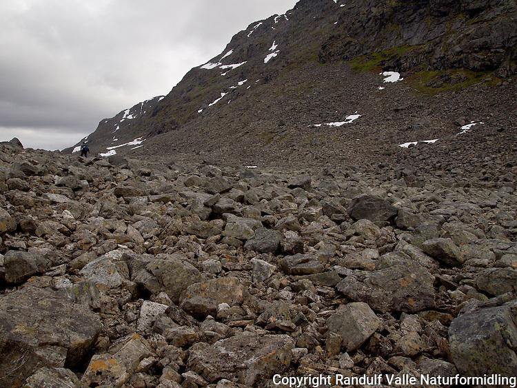 Mann går i fjellterreng på Seiland. ---- Man in rocky terrain.