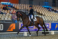 Angela Lloyd rides Ruanuku R during the Intermediate 1 Dressage. Final-3rd. 2019 Equitana Auckland. ASB Showgrounds. Auckland. New Zealand. Friday 22 November. Copyright Photo: Libby Law Photography