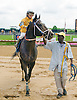 Polar Sunrise winning at Delaware Park with jockey Vladimir Jensen aboard.  This was  Vladimir Jensen's first winning mount of his career at Delaware Park on 6/15/15