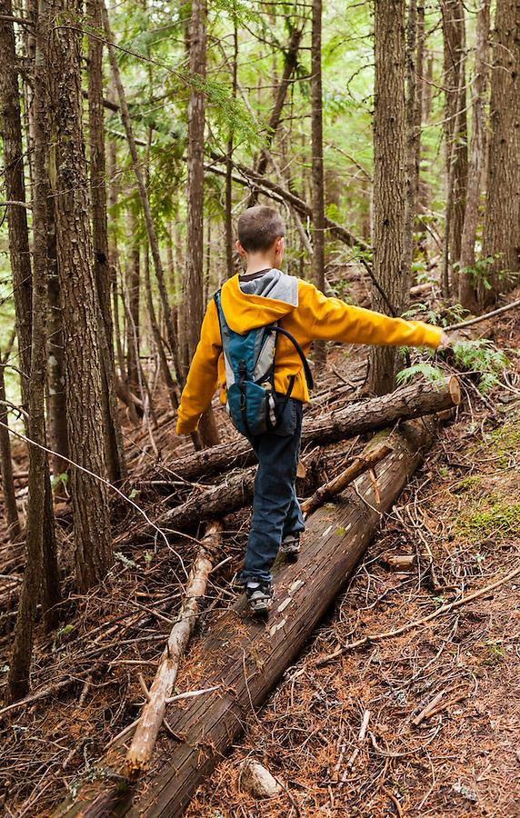 A seven year old boy balances on a fallen log along a trail near Priest Lake in Bonner County, Idaho