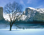 Winter fog moves in and out in the meadow, with Washington Column and Half Dome standing watch.