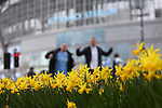 Daffodils outside the stadium during the Barclays Premier League match at Old Trafford. Photo credit should read: Philip Oldham/Sportimage