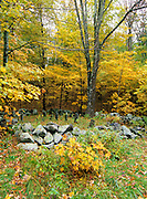 Pawtuckaway State Park - Tower Hill Cemetery in Nottingham, New Hampshire during the autumn months after a rain storm . This cemetery dates back to the 19th century mountain settlement that was once in the area.