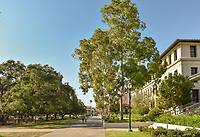 Academic Quad, Aug. 23, 2017.<br />