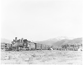 Wide-angle view of D&amp;RGW #318 at the head of a stock train loading sheep at the Ridgway stock pens.<br /> D&amp;RGW  Ridgway, CO  Taken by Krause, John - 8/1952