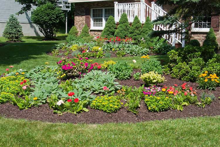 Curb appeal flower gardening plant flower for Small flower garden in front of house