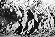 Image Ref: CA277<br /> Location: Sheoak Hike, Great Ocean Road<br /> Date of Shot: 26.04.18