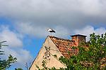 Węgorzewo, 2008-07-10. Bocian na dachu domu