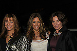 """Housewives of New York - Jill Zarin & Kelly Killoren Bensimon & Countess LuAnn de Lesseps at The Fourteenth Annual Hearts of Gold Gala """"Hooray for Hollywood!"""" - with its mission to foster sustainable change in lifestyle and levels of self-sufficiency for homeless mothers and their children on October 28, 2010 at the Metropolitan Pavillion, New York City, New York. (Photo by Sue Coflin/Max Photos)"""