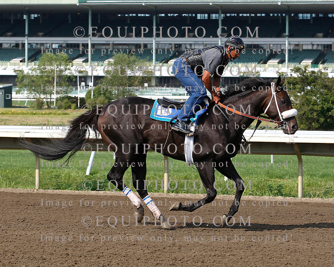 Resorts Haskell Invitational contender JJ's Lucky Train gallops at Monmouth Park on Tuesday morning July 26, 2011 with rider Gus Duarte. Photo By Bill Denver/EQUI-PHOTO