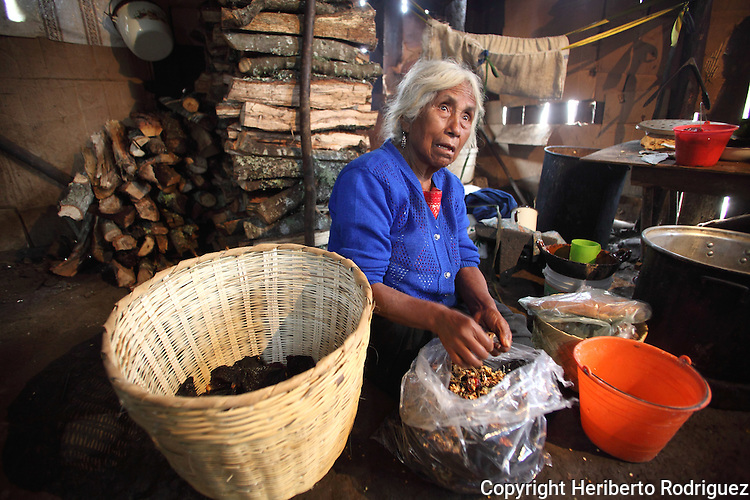 A Native nahuatl woman prepares tamales in their village of Acaxochitlan village, in northern state of Hidalgo, during the festivities of the Day of the Deads. Hundreds of Native villages pay homage to their deads on the eve of November 2 as a tradition since the preHispanic times. Photo by Heriberto Rodriguez