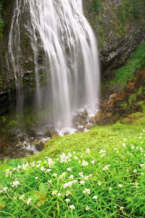 Narada Falls and wildflower meadow, Mount Rainier National Park, Lewis County, Washington, USA