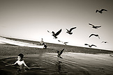 MEXICO, Baja, Magdalena Bay, Pacific Ocean, a young boy being swarmed by birds