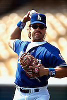 Mike Piazza of the Los Angeles Dodgers during a game at Dodger Stadium in Los Angeles, California during the 1997 season.(Larry Goren/Four Seam Images)