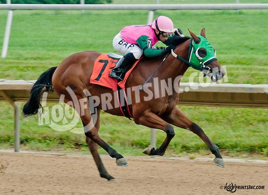 Barracuda Wayne winning at Delaware Park on 7/8/13