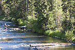 A flyfishing experience on Hyalite Creek near Bozeman, Montana offers solitude and relaxation for a local.