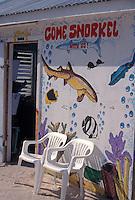 Colourful aquatic mural outside a dive shop on Caye Caulker, Belize