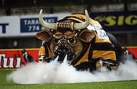 Ferdy the Bull steams up the pitch before the match. Air New Zealand Cup rugby match - Taranaki v Auckland at Yarrows Stadium, New Plymouth, New Zealand. Friday 9 October 2009. Photo: Dave Lintott / lintottphoto.co.nz