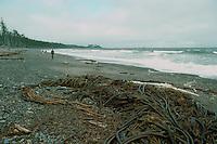Haida Gwaii (Queen Charlotte Islands), Northern BC, British Columbia, Canada - Agate Beach along McIntyre Bay, Naikoon Provincial Park, Graham Island