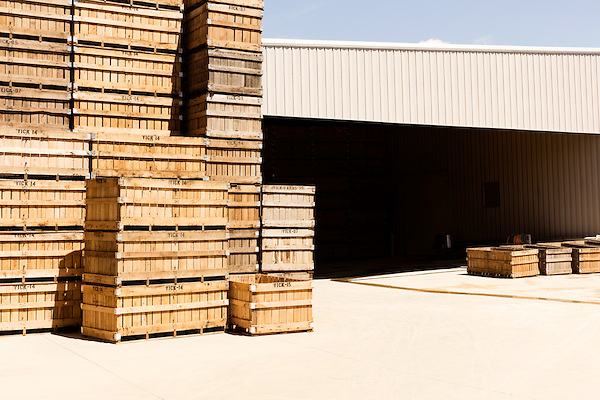 August 22, 2016. Wilson, North Carolina<br />  Empty sweet potato crates outside the packing house at Vick Family Farms.<br /> Vick Family Farms uses Greenlight provided broadband to monitor its tobacco drying barns as well as run its large sweet potato operation. If they lose the network due to recent legal suits brought by the telecom industry on the city of Wilson, who provides the fiber optic broadband, they may be unable to run the business with near the level of efficiency.<br />  Greenlight Community Broadband is a fiber optic internet service provider owned by the city of Wilson, NC. Popular with residents for its reliability and speed, the city started offering the service to towns outside of its municipal limits before a court case brought by the telecom industry took away the city's ability to expand beyond its borders. Several businesses and residents who have come to rely on the utility fear for their livelihoods if the service is discontinued.