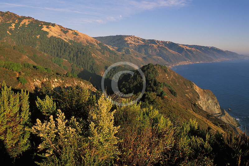 California, Big Sur, Pacific Coast