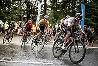 Egan Bernal (COL/Ineos) storming up the Col de Porte (with 2km to go) with Primoz Roglic (SVK/Jumbo-Visma) in tow<br /> <br /> Stage 2: Vienne to Col de Porte (135km)<br /> 72st Critérium du Dauphiné 2020 (2.UWT)<br /> <br /> ©kramon