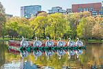 Swan boats in the Boston Public Garden, Boston, Massachusetts, USA