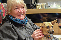 Carol Foster with her dog, Suri, in restaurant in San Pedro de Alcantara, Malaga Province, Spain. Carol shares her time between Spain and the UK.  Taken: April, 2018, 201804124260.<br /> <br />Copyright Image from Victor Patterson, 54 Dorchester Park, <br />Belfast, UK, BT9 6RJ<br /><br />t1: +44 28 9066 1296 (from Rep of Ireland 048 9066 1296)<br />t2: +44 28 9002 2446 (from Rep of Ireland 048 9002 2446)<br />m: +44 7802 353836<br /><br />victorpatterson@me.com<br />victorpattersonbelfast@gmail.com<br /><br />Please see my Terms and Conditions of Use at victorpatterson.com. It is IMPORTANT that you familiarise yourself with them.<br /><br />Images used on the Internet incur an additional cost and must be visibly watermarked i.e. &copy;Victor Patterson within the body of the image and copyright metadata must not be deleted. Images used on the Internet have a size restriction of 4kbs and are chargeable at rates available at victorpatterson.com.<br /><br />This image is available only for the use of the download recipient i.e. television station, newspaper, magazine, book publisher, etc, and must not be passed on to any third party. It is also downloaded on condition that each and every usage is notified within 7 days to victorpatterson@me.com<br /><br />The right of Victor Patterson (or the named photographer) to be identified as the author is asserted in accordance with The Copyright Designs And Patents Act (1988). All moral rights are asserted.