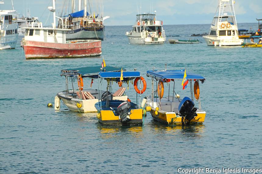 A few taxi boats on a harbour.
