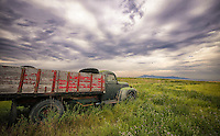 Flatbed Ford in the field - Montana