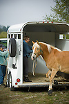 Horse and trailer in Crescent City California