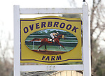 2017_03_06 Overbrook Farm NJ_Irish Sovereign