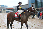 March 14, 2020: Excession (2) with jockey Tyler Baze aboard after the Rebel Stakes at Oaklawn Racing Casino Resort in Hot Springs, Arkansas on March 14, 2020. Justin Manning/Eclipse Sportswire/CSM